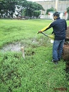 Misting pest control singapore