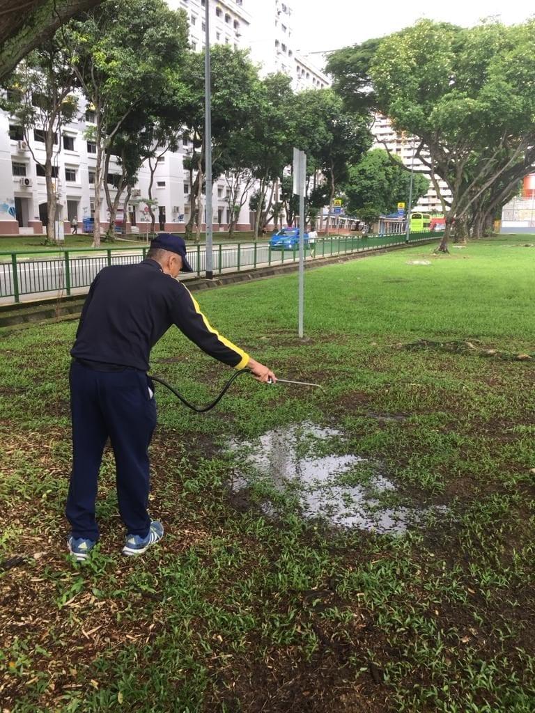 pest treatment services singapore