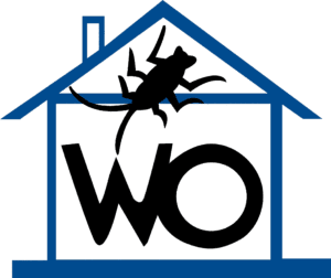 wipeout pest control services singapore